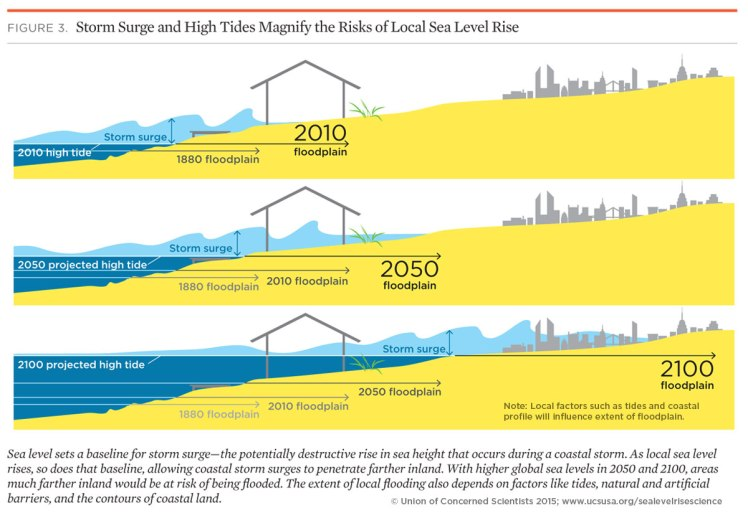 gw-impacts-graphic-storm-surge-high-tides-magnify-sea-level-rise-risks.jpg